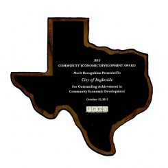 Texas Economic Development Council Award